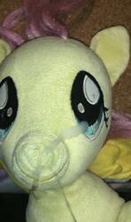 character:fluttershy creator:lolzorg creator:that_purple_horse cum cum_on_plushie toy:build-a-bear toy:plushie // 1125x1902 // 1.4MB