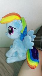 character:rainbow_dash toy:plushie // 1000x1778 // 462.9KB