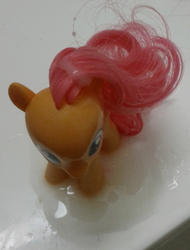 character:scootaloo cum cum_on_toy toy:brushable // 500x659 // 87.5KB