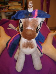 character:twilight_sparkle creator:jin fetish:scat shit shit_on_plushie toy:plushie // 1944x2592 // 2.3MB