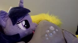 artist:neysanight character:derpy_hooves character:twilight_sparkle creator:earthenhoof custom_plush has_audio licking lifesized music quality:720p toy:plushie video // 1280x720 // 6.5MB