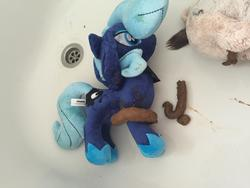 character:princess_luna fetish:scat fetish:watersports pee pee_on_plushie shit shit_on_plushie toy:plushie // 3264x2448 // 1000.7KB