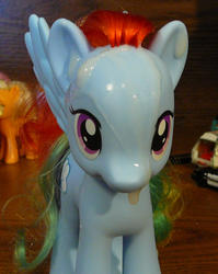 character:rainbow_dash cum cum_on_toy toy:brushable // 651x819 // 463.5KB