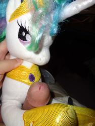 character:princess_celestia grinding male penis toy:plushie // 1944x2592 // 385.3KB