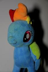 character:rainbow_dash cum dried_up_cum toy:plushie // 3840x5760 // 2.4MB