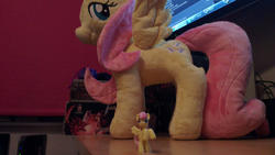 character:fluttershy character:sunny_ray cum cum_on_toy custom_plush toy:blindbag toy:plushie // 1920x1082 // 461.3KB