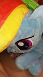 character:rainbow_dash grinding male penis toy:plushie // 1000x1778 // 428.9KB