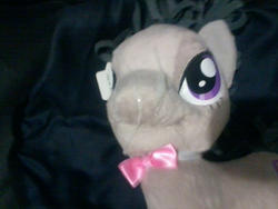 character:octavia_melody cum cum_on_plushie toy:plushie // 800x600 // 225.0KB