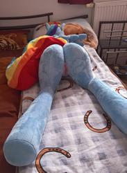 character:rainbow_dash creator:plushmods custom_plush lifesized sph toy:plushie vagina // 1501x2048 // 388.5KB