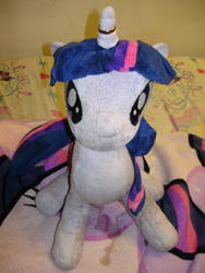 character:twilight_sparkle creator:jin fetish:watersports pee pee_on_plushie toy:plushie // 1944x2592 // 2.0MB