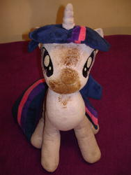 character:twilight_sparkle creator:jin fetish:scat shit shit_on_plushie toy:plushie // 1944x2592 // 2.2MB