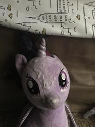 character:twilight_sparkle creator:JamesW69 cum cum_on_plushie toy:build-a-bear toy:plushie // 3024x4032 // 999.6KB