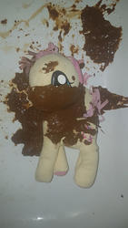 character:fluttershy fetish:scat shit shit_on_plushie toy:plushie // 2268x4032 // 3.5MB